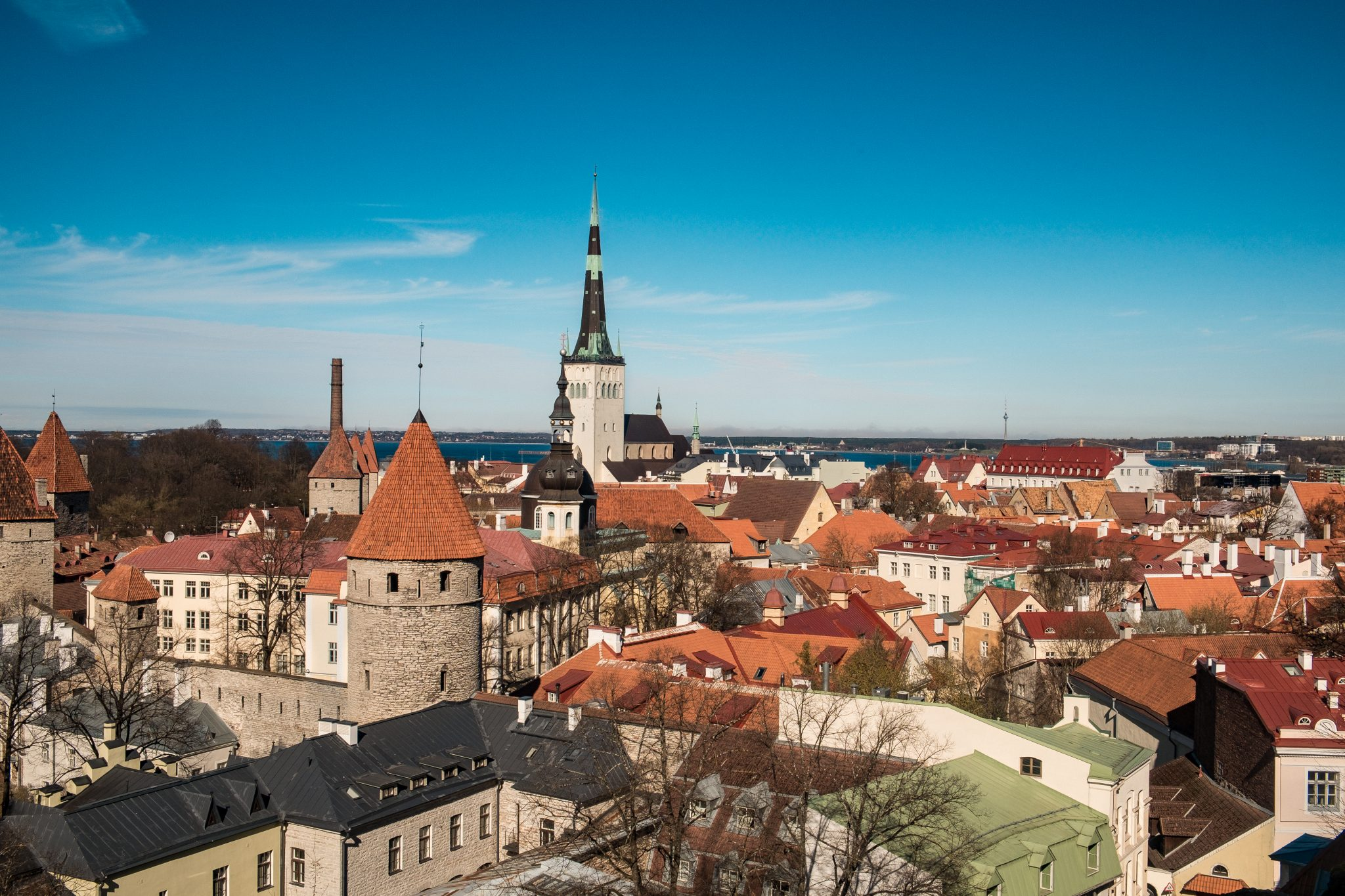 Panoramic view of tallinn with old houses and medieval tower photo by Jo Kassis