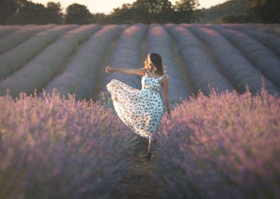 Project: Lavender Fields