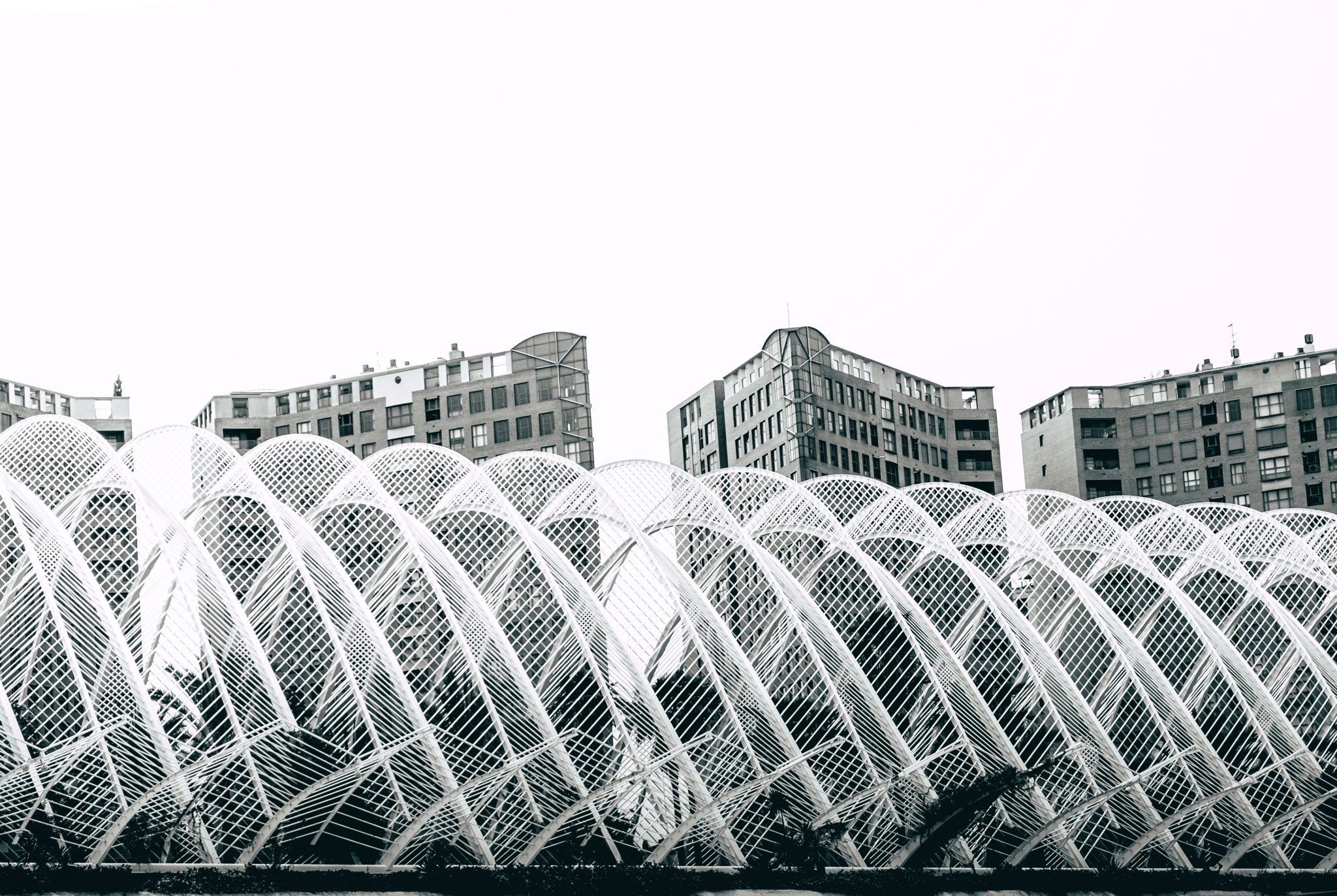 The architectural complex The City of Arts and Sciences in the city of Valencia photo by Jo Kassis