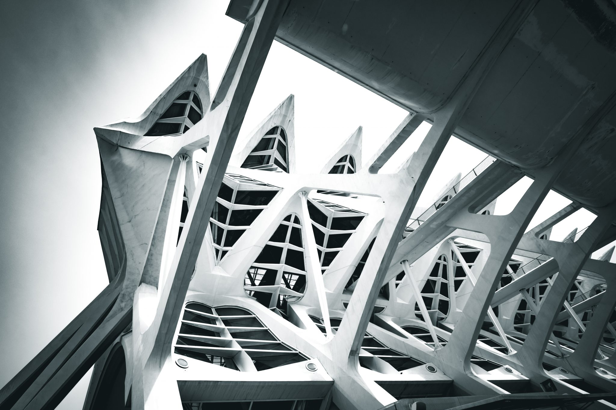 Upward view of the architectural complex The City of Arts and Sciences in the city of Valencia photo by Jo Kassis