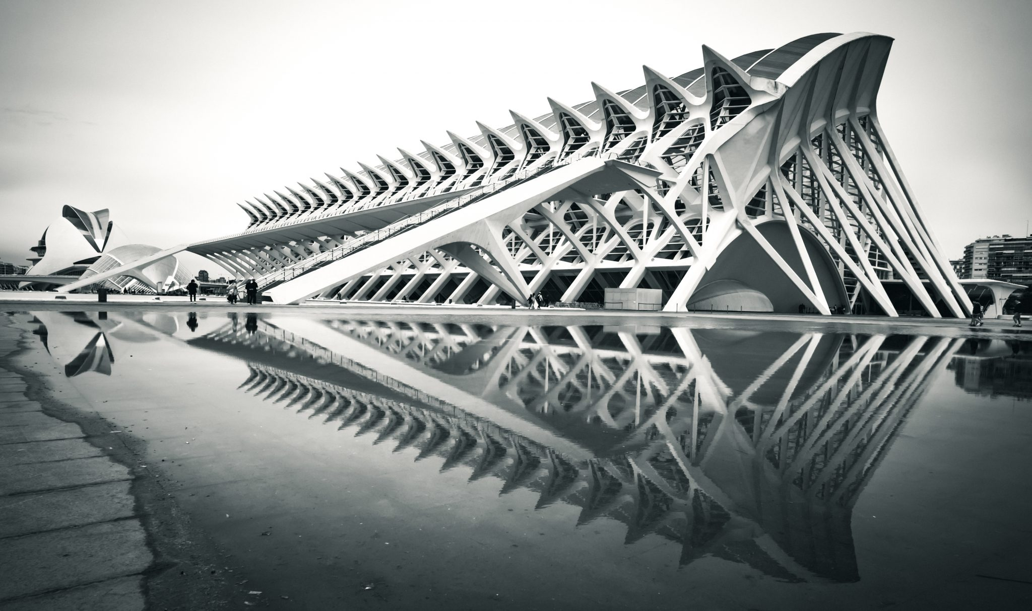 Building reflection in water at the architectural complex The City of Arts and Sciences in the city of Valencia photo by Jo Kassis