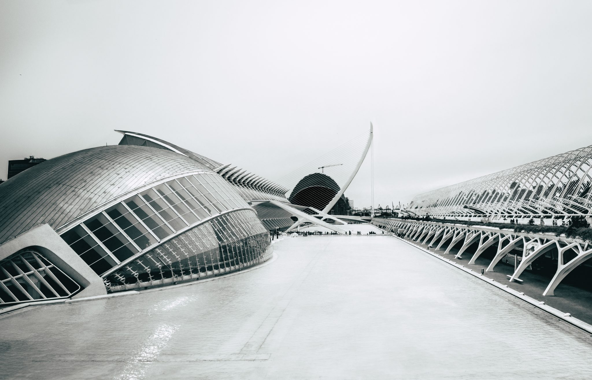 Panoramic view of the architectural complex The City of Arts and Sciences in the city of Valencia photo by Jo Kassis