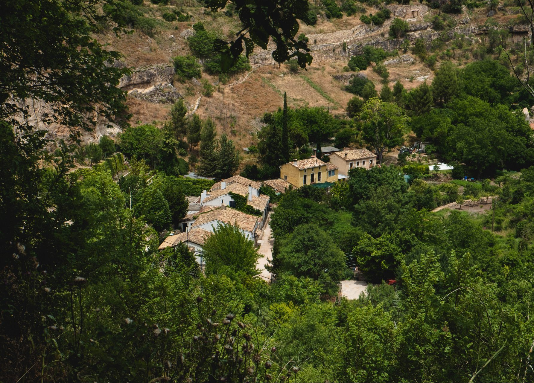 View of the village of Cuenca between trees photo by Jo Kassis