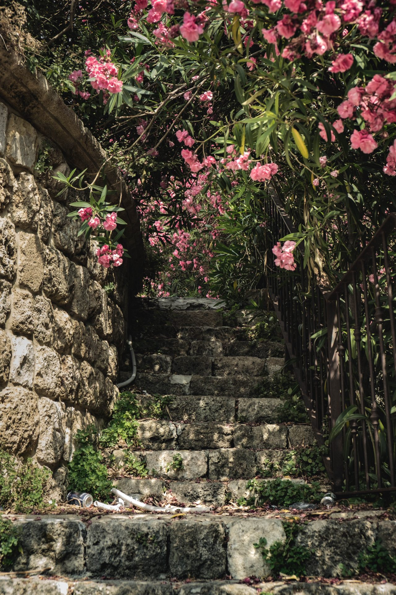 Historical stairs in Byblos lebanon with flowers photo by Jo Kassis