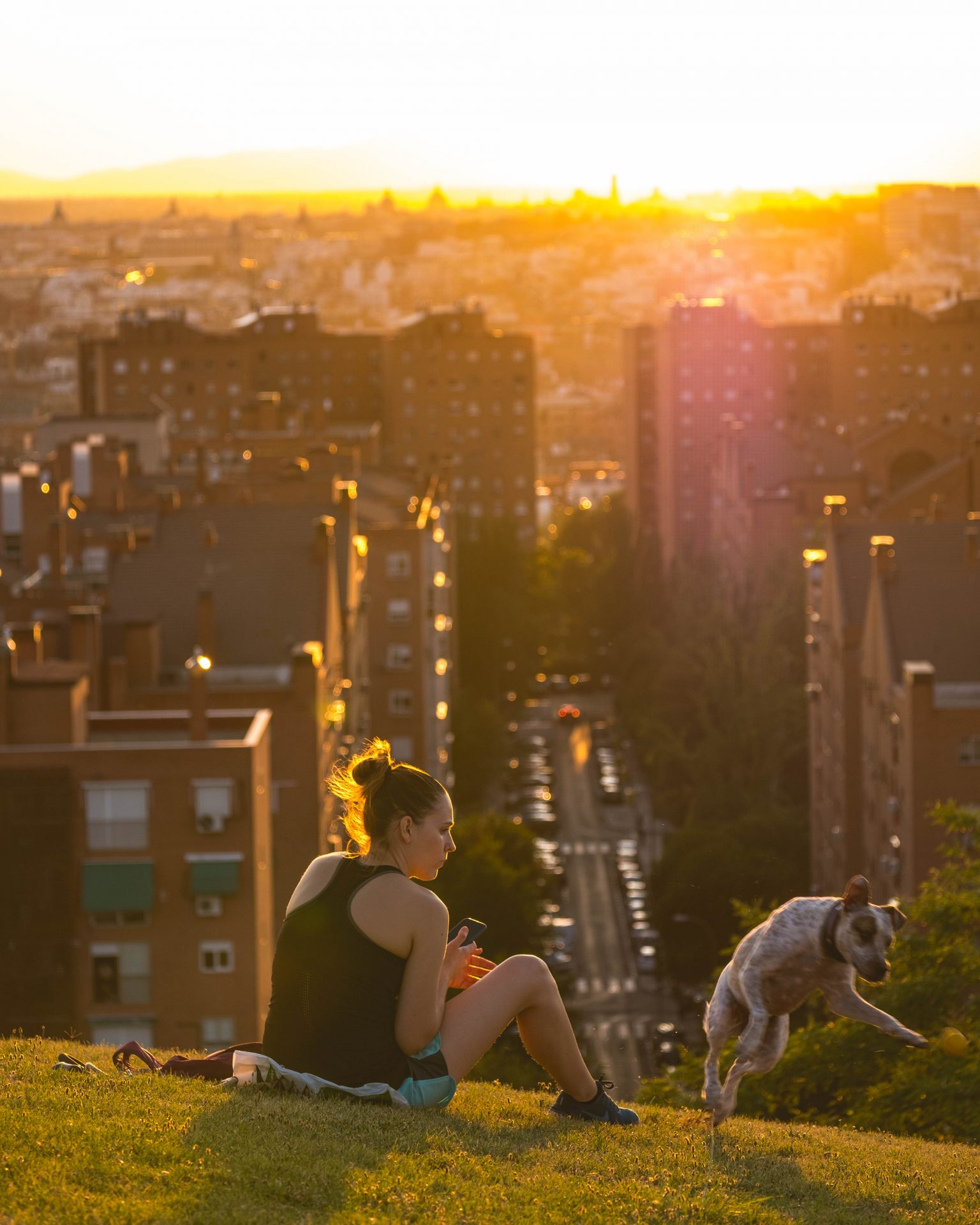 Girl playing with her dog at sunset in the parque de las siete tetas with the city of Madrid in the background photo by Jo Kassisphoto by Jo Kassis